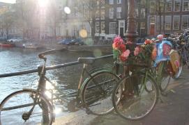 Amsterdam | bikes